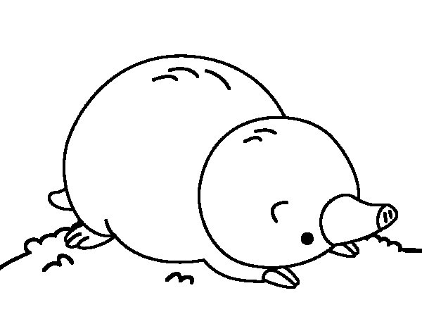 Mole lying down coloring page