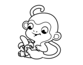 Monkey with banana coloring page