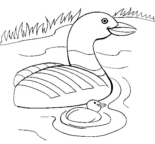 Mother Goose And Gosling Coloring Page