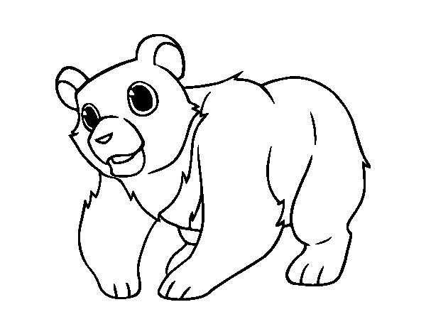 Mountain Grizzly Bear coloring page