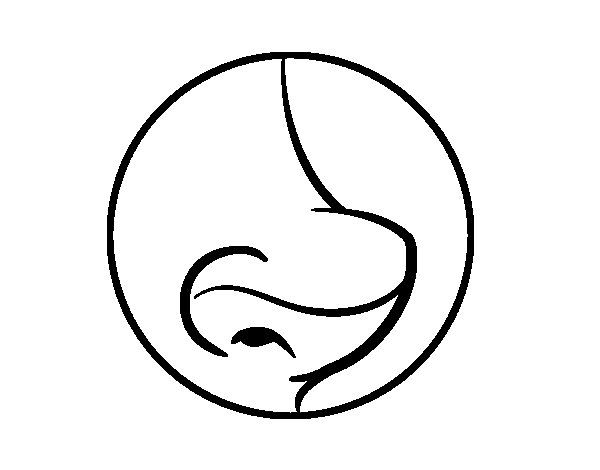 Nose coloring page