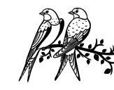Pair of birds coloring page
