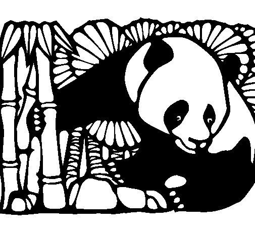 Panda and bamboo coloring page