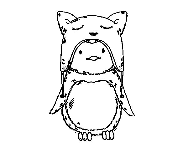 Penguin with funny cap coloring page
