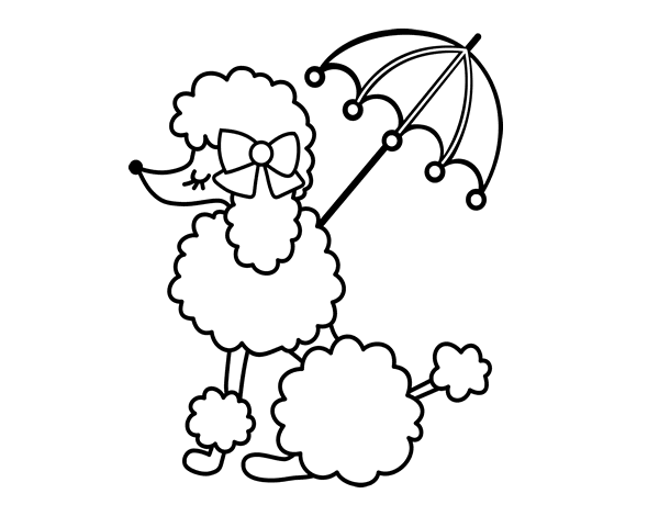 coloring pages of poodles - photo#17