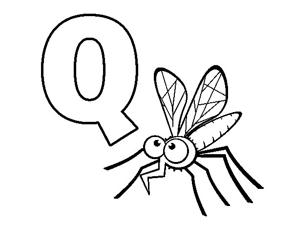 Q of Mosquito coloring page