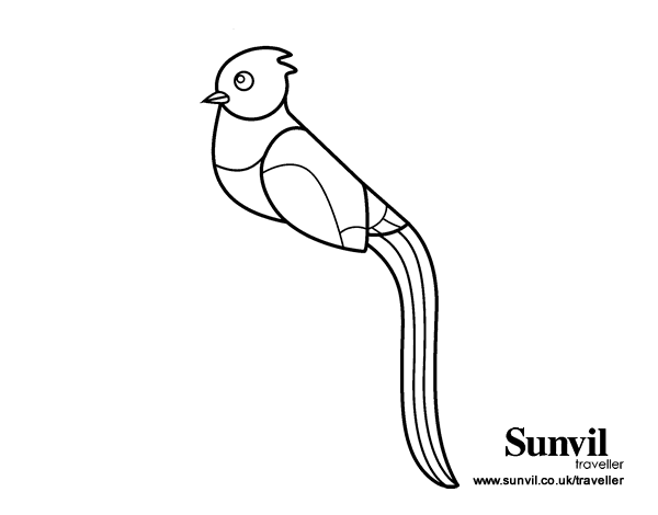 quetzals of guatemala coloring pages - photo #13