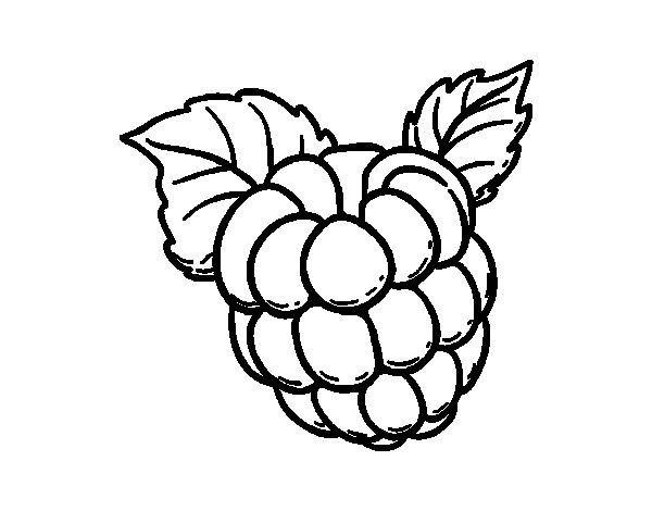 Raspberry Coloring Page