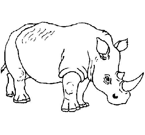Rhinoceros 3 coloring page