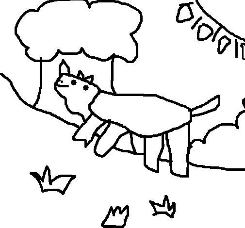 Rhinoceros 5 coloring page