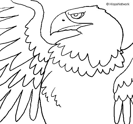 Roman Imperial Eagle coloring page