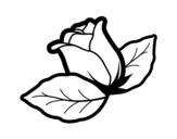 Rose with leaves coloring page