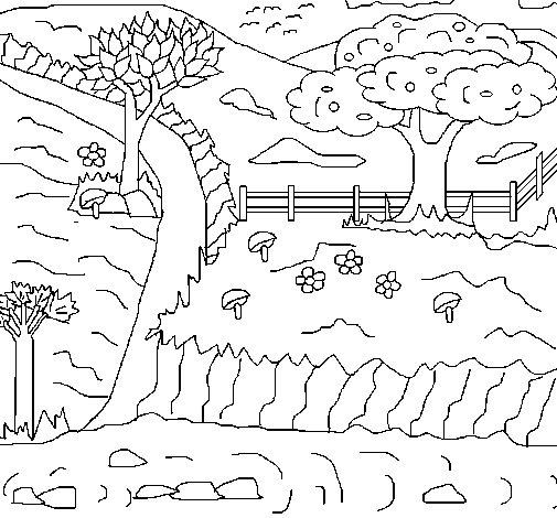 Rural landscape coloring page