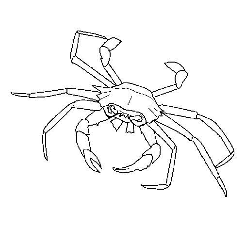 Sea crab coloring page