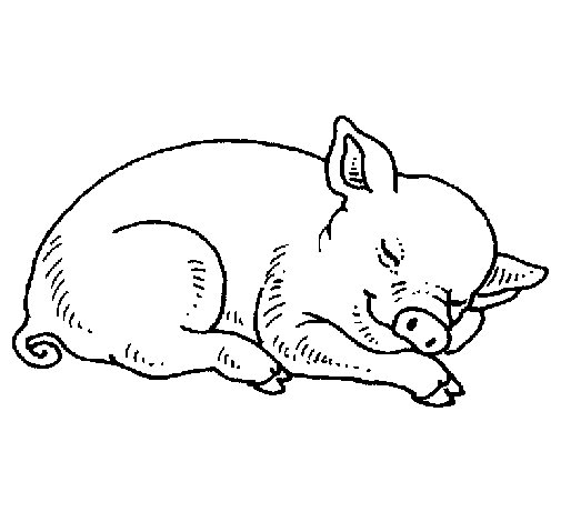 Sleeping pig coloring page