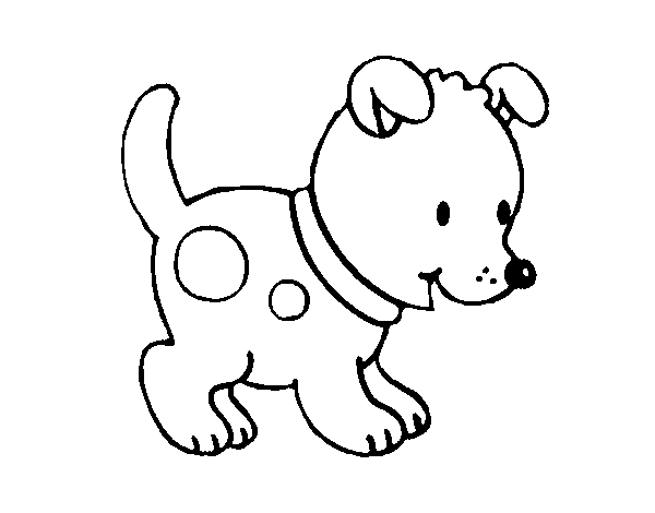 Small puppy coloring page - Coloringcrew.com