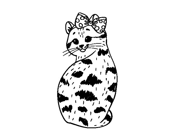 Smug kitten coloring page