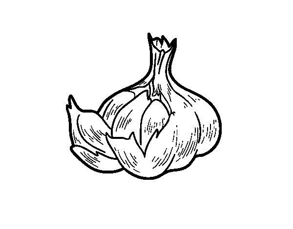Some garlic coloring page