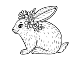 Spring rabbit coloring page