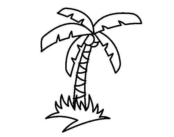 tropical palm tree coloring page