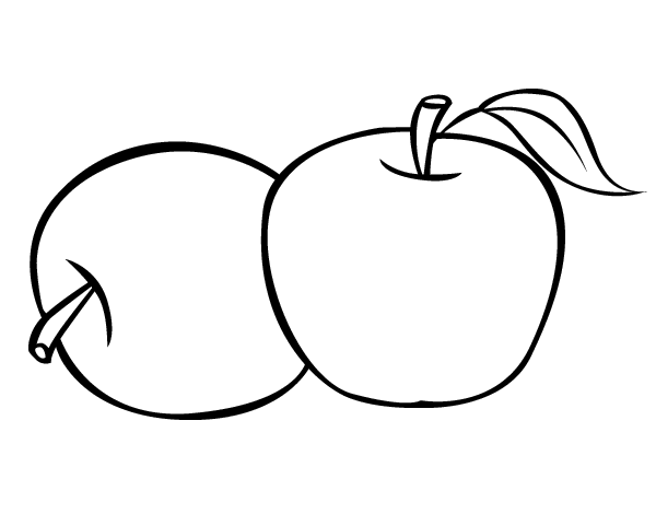 Two apples coloring page coloringcrew com