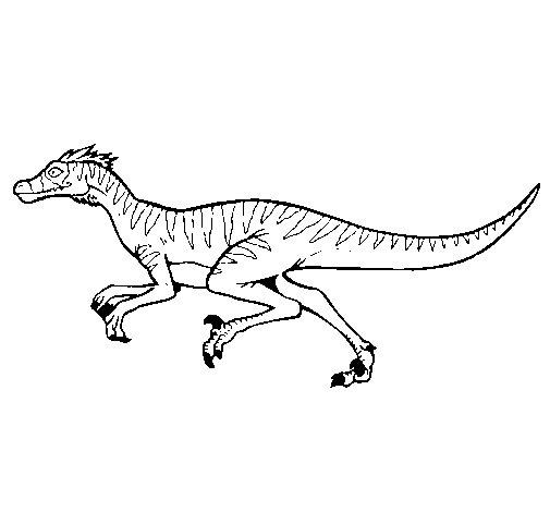 velociraptor coloring page - Velociraptor Coloring Page