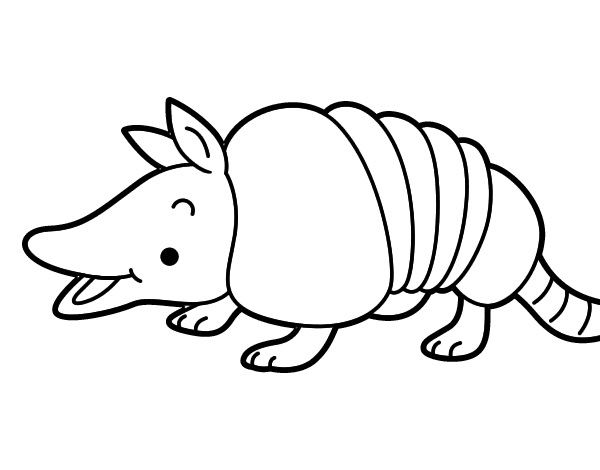 armadillo coloring sheet coloring pages