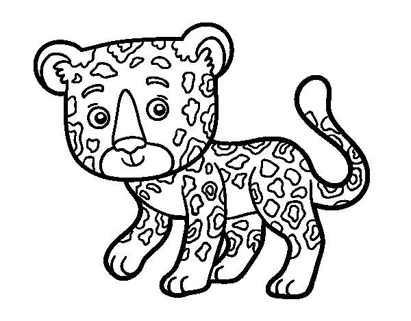 Young Cheetah coloring page