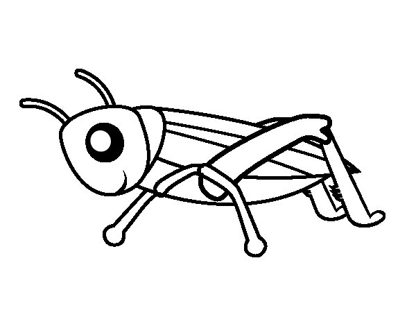 cute grasshopper coloring pages. dragonfly coloring pages ...