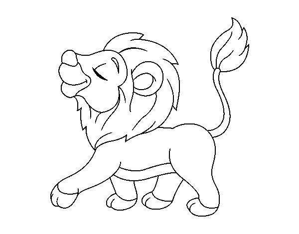 Young lion coloring page