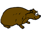 Coloring page Badger painted bytalha