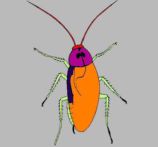 Coloring page Large cockroach painted bygrilo