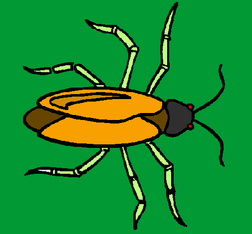 Coloring page Cockroach painted byHugo