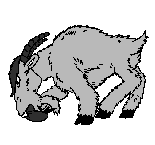 Coloring page Angry goat painted byanimal