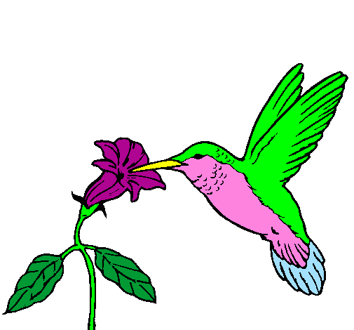 Colored page Hummingbird and flower painted by tirimaco leileen