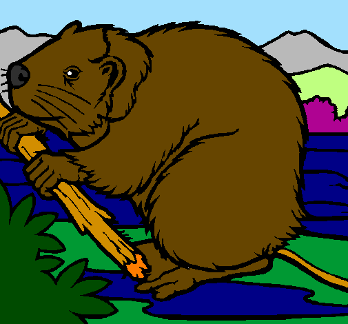 Coloring page Beaver  painted byThieli