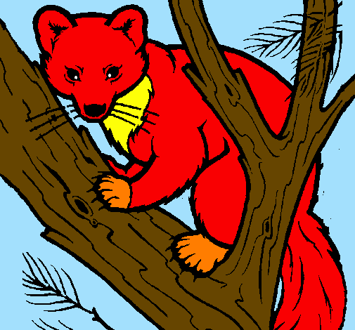 Coloring page Pine marten in tree painted byana luiza