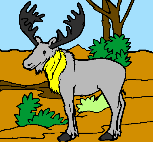 Coloring page Moose painted byana luiza