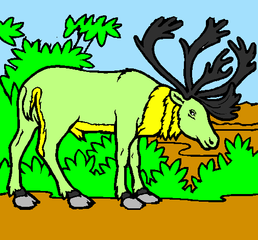 Coloring page Elk painted byana luiza