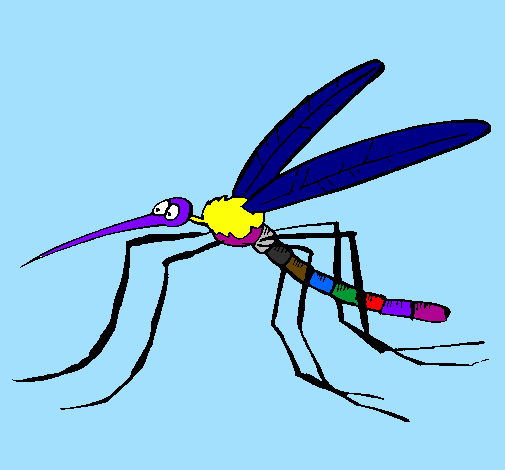 Coloring page Mosquito painted byana luiza