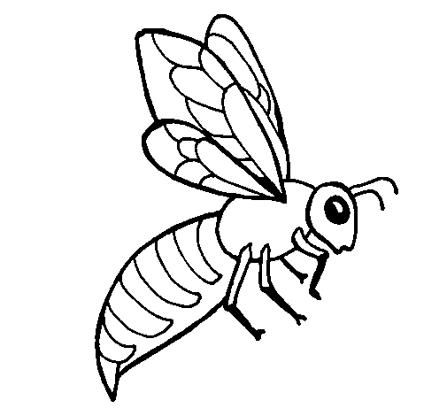 Coloring page Bee painted byyuan