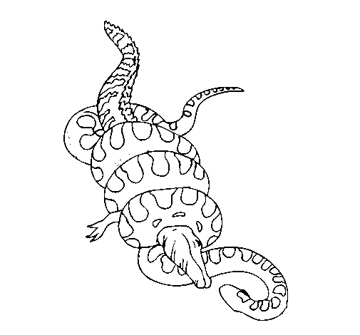 Coloring page Anaconda and caiman painted bycool
