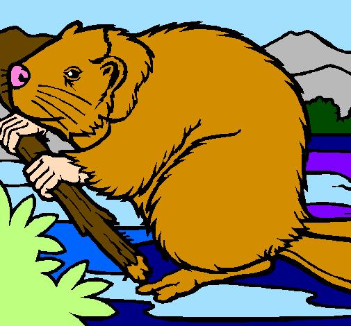 Coloring page Beaver  painted byangela