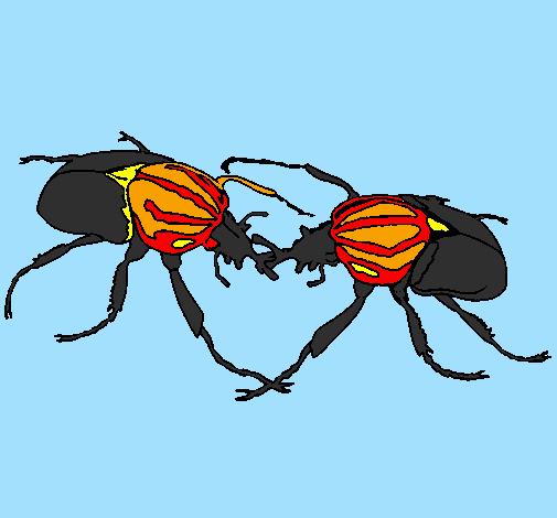 Coloring page Beetles painted byCandie