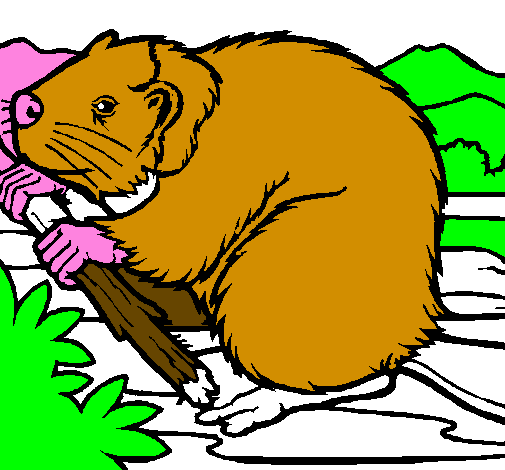 Coloring page Beaver  painted bygael