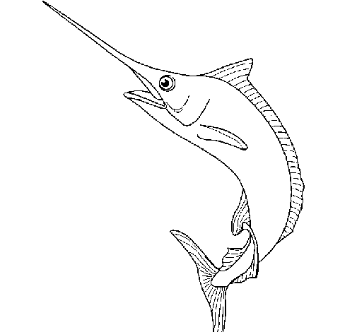 Coloring page Swordfish painted by132