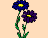Coloring page Daisies painted byMarga