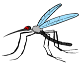Coloring page Mosquito painted byCandie