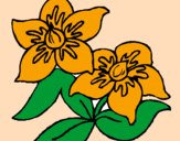 Coloring page Flowers painted byMarga