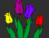 Coloring page Tulips painted byenzo